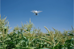 P4 Multispectral Drone for Agriculture by DJI & Base Station